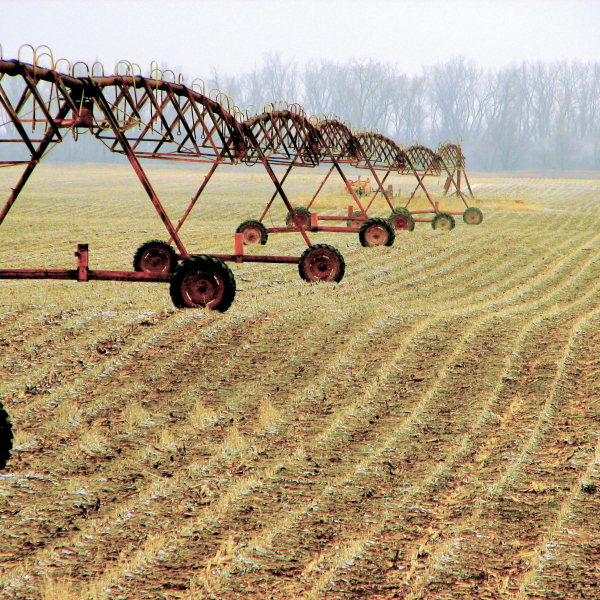 Agriculture as Industry